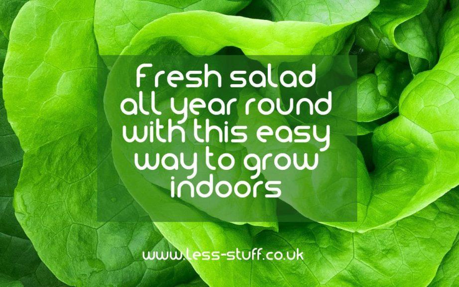 fresh salad all year round