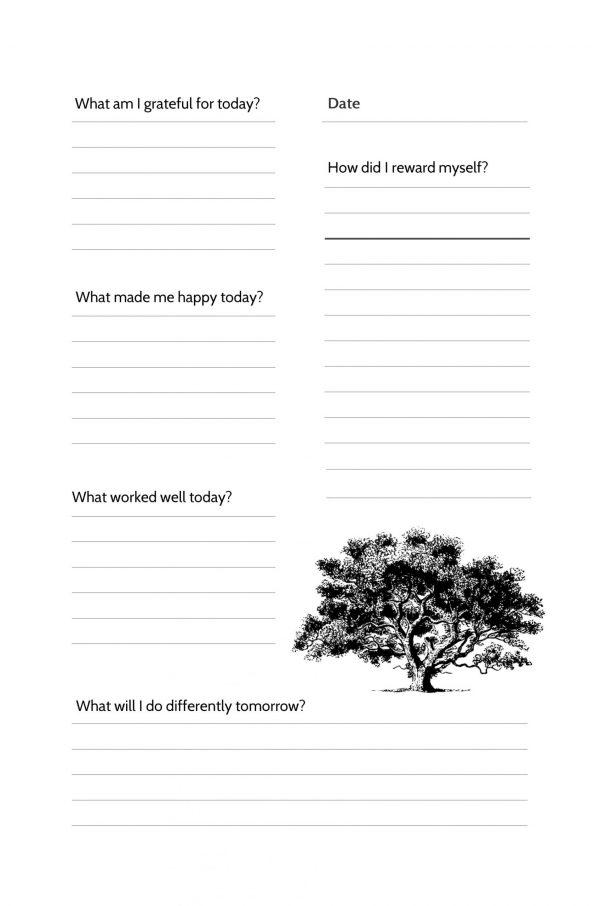 Gratitude Journal Paperback